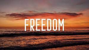 10 Lines On Freedom in Hindi